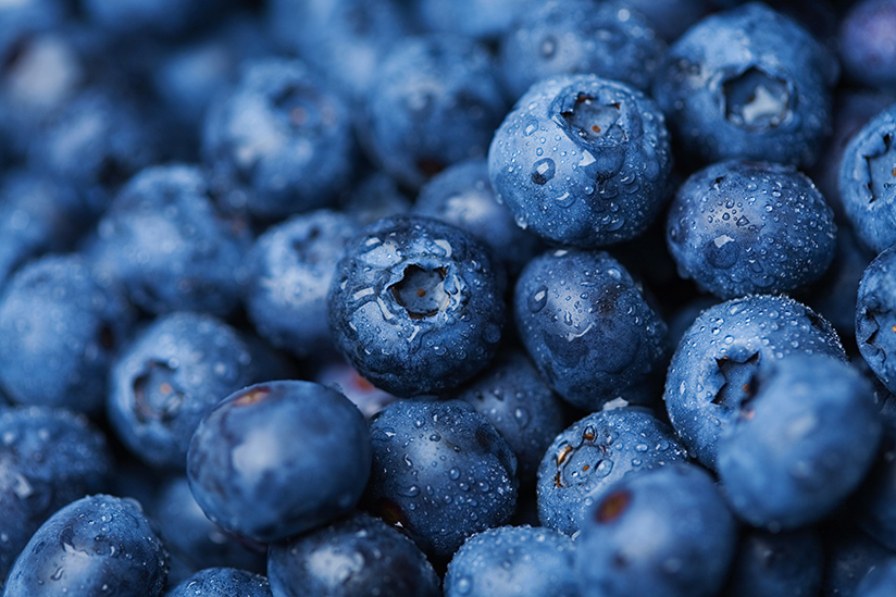 Fotografi av blåbær.