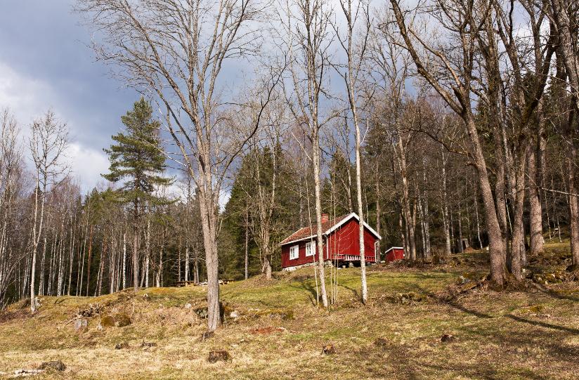 Fotografi av en rødmalt, gammel hytte som ligger alene i et skogsterreng. Hytta har vært en tidligere husmannsplass.