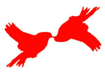 Illustrasjon av to fugler hvor fuglen til høyre har blitt dreid 180 grader om et punkt. Punktet er fuglens nebb.