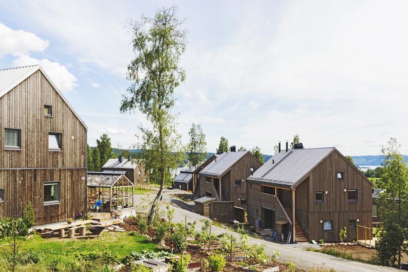 Fotografi av hus som ligger i Norges første økolandsby i Hurdal. Husene er bygget i naturmaterialer.