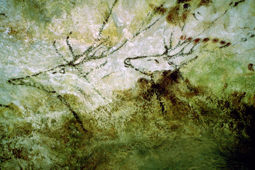 Fotografi med nærbilde av hulemaleri som forestiller svømmende rådyr (fra Lascaux, ca 15 000 fvt).
